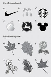 logos-vs-leaves-4